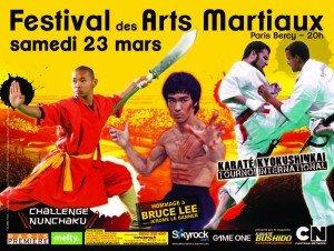 festival-arts-martiaux-300x226