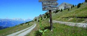 Vars la Forêt Blanche (Hautes-Alpes) une destination nature dans un camps de base estival