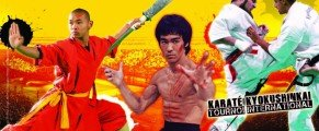 Le 28e Festival des Arts Martiaux rendra hommage à Bruce Lee