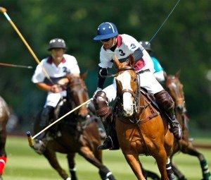 Polo, la reprise dans Activitées physiques b7e4097-300x255