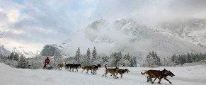 La Grande Odyssée Savoie Mont-Blanc, jeudi 16 janvier 2014