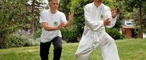«Qi Gong, l'énergie positive» Dimanche 22 Juin 2014 de 10h à 18h à la Pagode du Bois de Vincennes