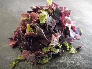 170331_paillettes-salade-du-pecheur