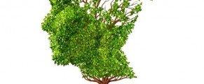 L'activité physique contre la maladie d'Alzheimer